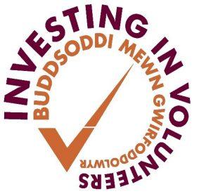 Iiv logo