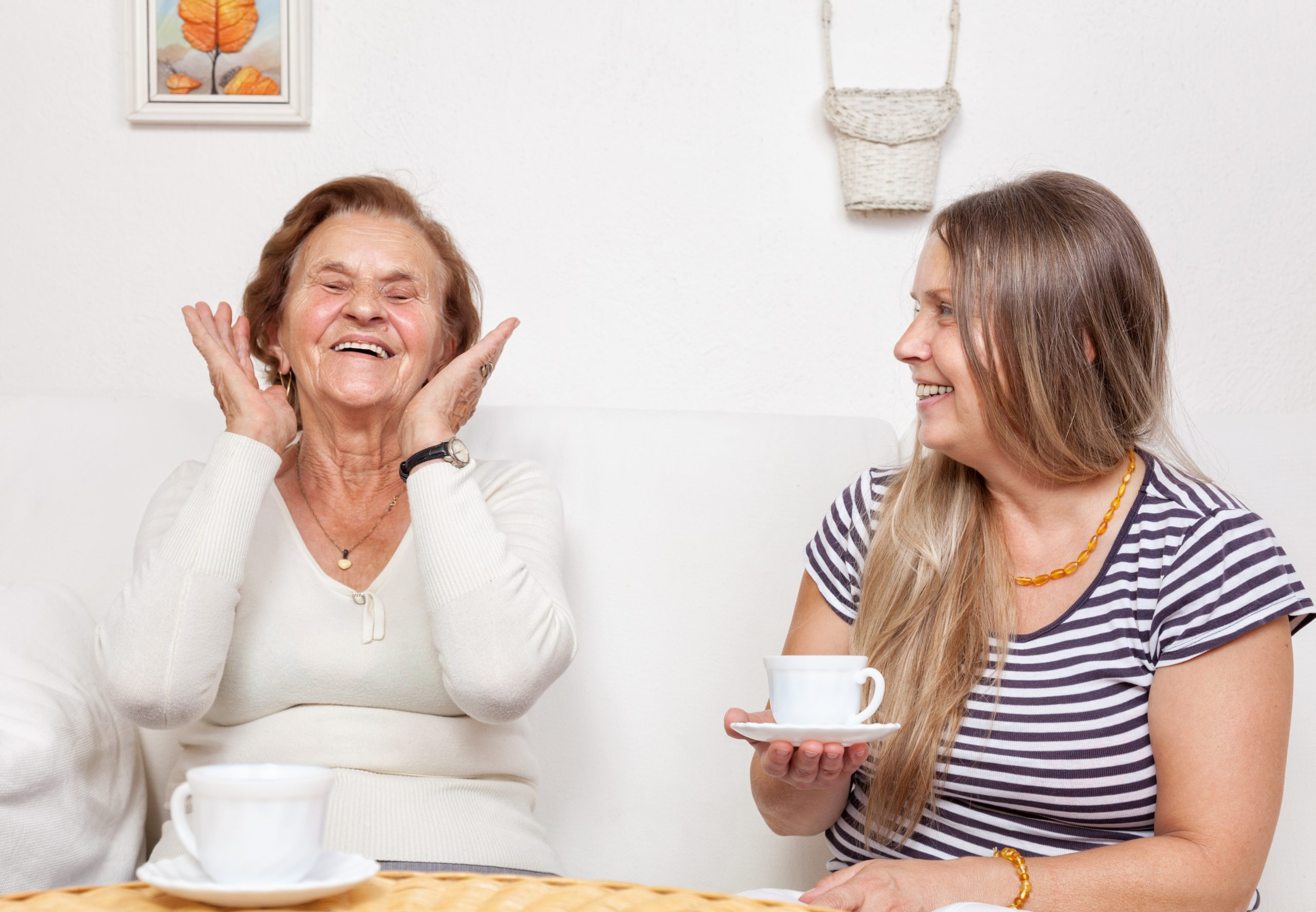 Carer having a cup of tea with an elderly retired woman